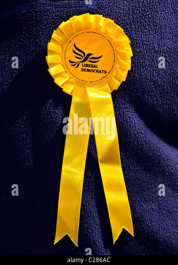 Liberal Democrats political party rosette, Britain, UK - Stock Image