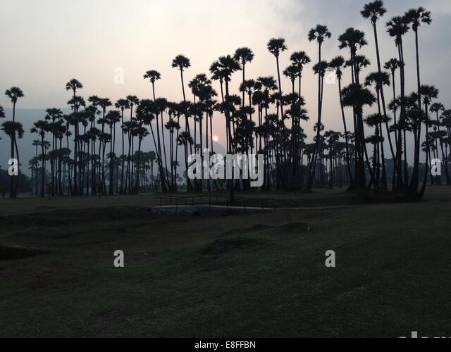 India, Andhra Pradesh, Sunset - Stock-Bilder