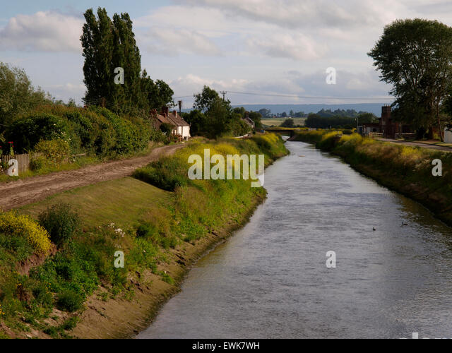 River Tone, Currymore, Somerset, UK - Stock Image