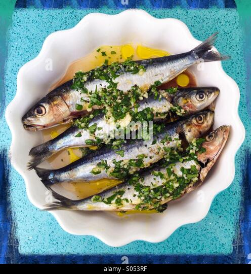 Sardines in lemon juice, garlic,olive oil and coriander. - Stock-Bilder