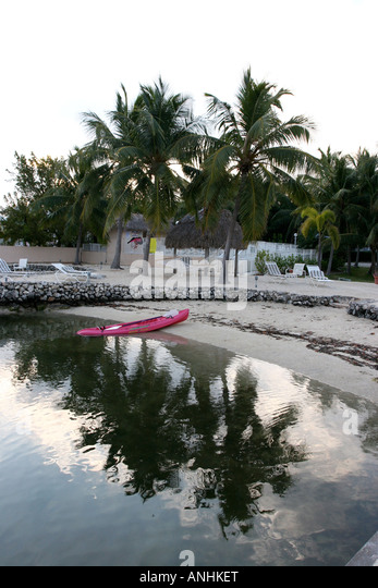 Palm reflections on still sea with pink canoe - Stock Image