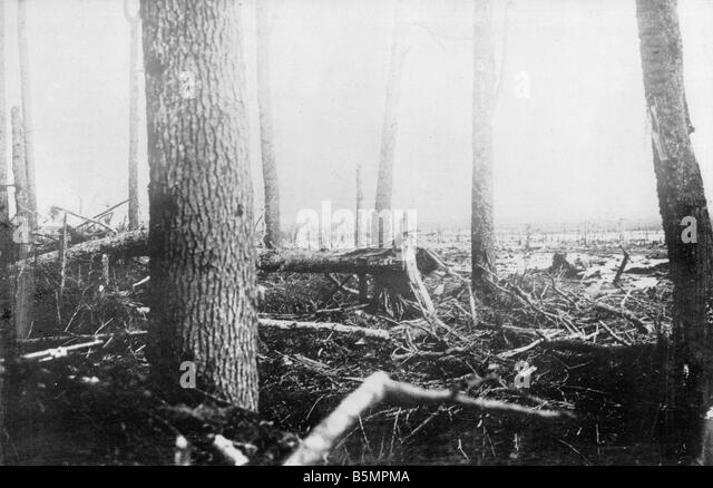 9 1916 3 18 A1 6 E Battle of Postawy 1916 Battlefield World War 1 Eastern Front Defeat of Russian troops after an - Stock-Bilder