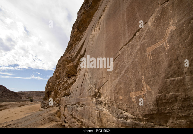 Cliff face along wadi bed showing rock-Art  of animals in the Eastern Desert of Egypt. - Stock Image