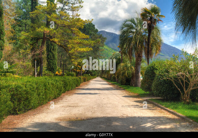 Green alley in the seaside park on the background of mountains on sunny day, HDR processing - Stock Image