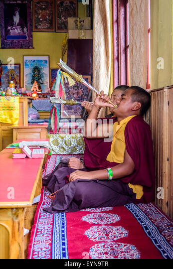 Buddhist priests, Lamas, praying inside a monastery in India, playing traditional flute with copy space - Stock Image