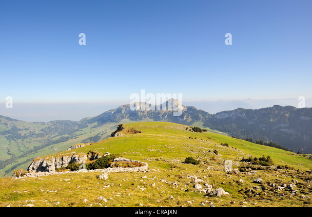 Pasture on the escarpment on the high plateau Alp Sigel, 1730 m, in the Appenzell Alps with a view towards Hohen - Stock Image