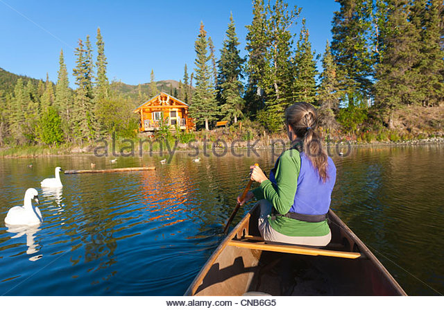 Canoeist on Willow Lake paddles back to lakeside Cabin and Willow Lake B&B along side two swans, Copper River - Stock Image