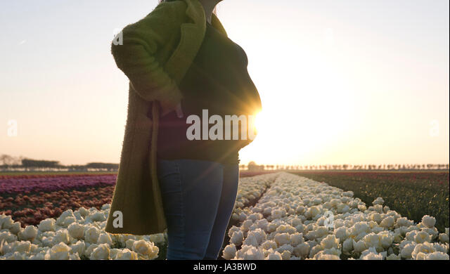 A pregnant woman resting her hands on her bump as she stands in a field of magnificent flowers. - Stock Image
