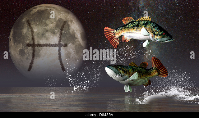 Two Fish Pisces Sign Zodiac Stock Photos &amp