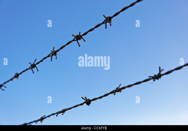 landscape of angled rusty barbed wire against graduated clear blue sky wth crop margins and empty negative spaces - Stock Image