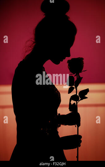 Romantic scene of the lady with the rose given by husband - Stock-Bilder
