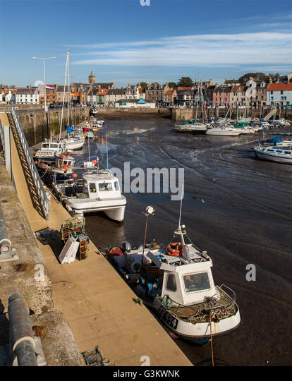 Boating Harbour, Low Tide, Early Morning, Anstruther, Fife, Scotland, - Stock Image