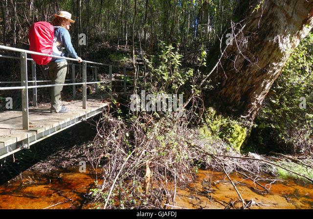 nuyts wilderness track meet