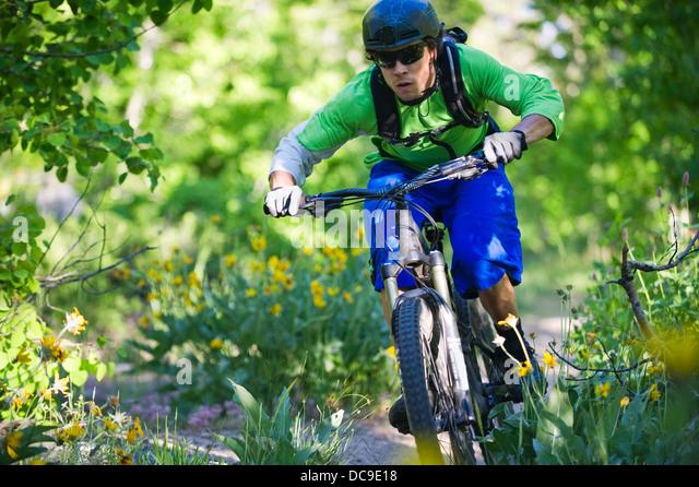 A man, mountain biking on the Scott's Lake trail in South Lake Tahoe, CA. - Stock Image