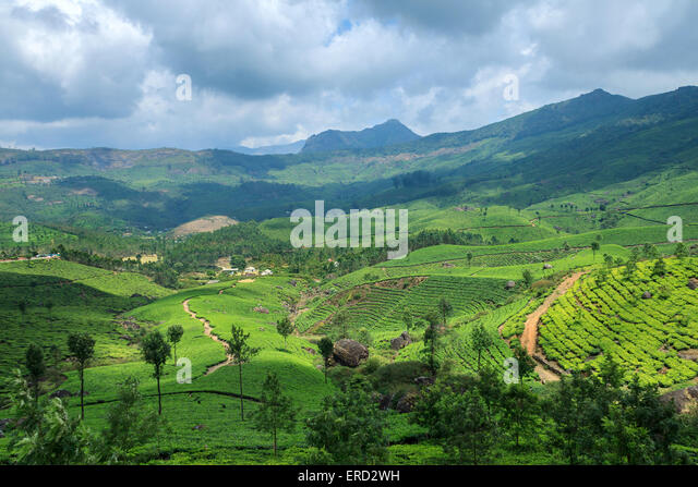 kerala village scenery stock photos amp kerala village