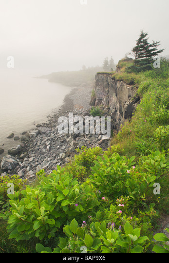 Digby Gut in fog from Point Prim, Digby, Nova Scotia, Canada - Stock Image