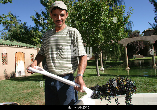New Mexico Albuquerque Rio Grande Valley Casa Rodena Winery W - Stock Image