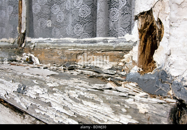 White paint peeling of an old, badly maintained, wooden windows frame. - Stock Image