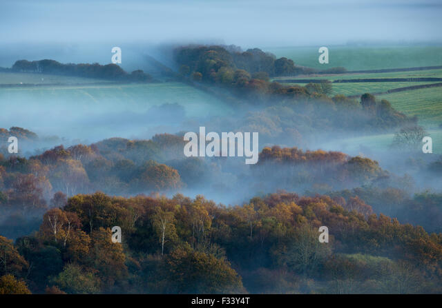 a misty morning on the Isle of Purbeck nr Corfe Castle, Dorset, England - Stock-Bilder