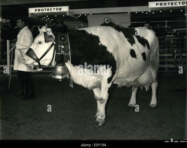 Vache stock photos vache stock images alamy for Porte de versailles salon de l agriculture