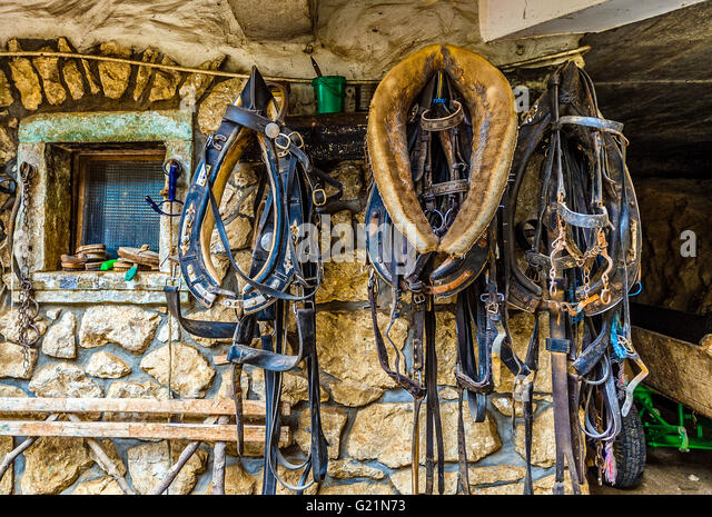 Slovenia Bled Collars for trasnport with chariot - Stock Image
