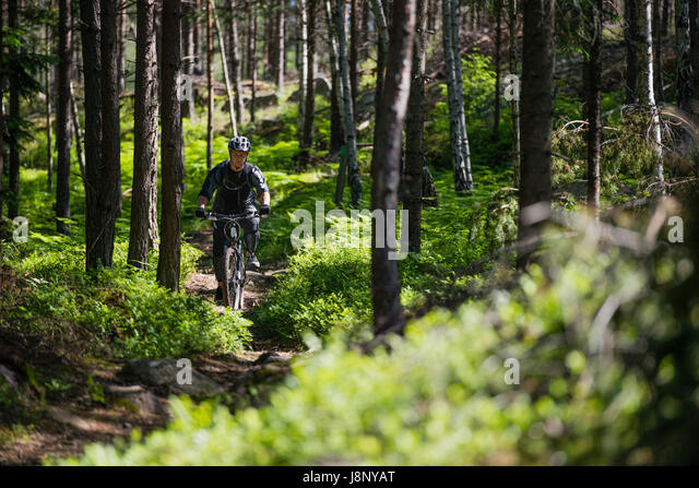 Man riding bicycle in forest - Stock-Bilder