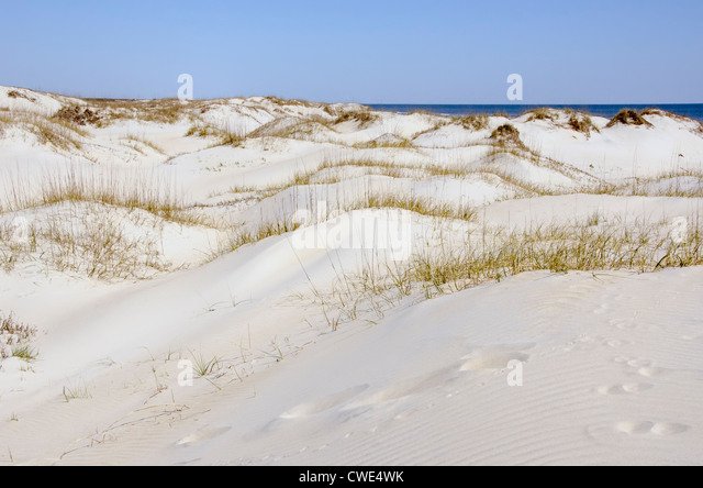 Sand dunes stretching to horizon in Currituck County, Outer Banks, North Carolina - Stock Image