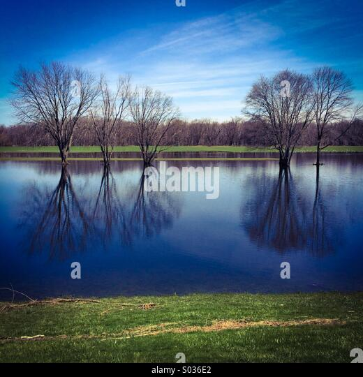 Landscape in Connecticut - Stock Image
