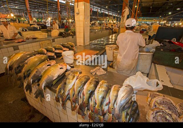 River bass stock photos river bass stock images alamy for River fish market