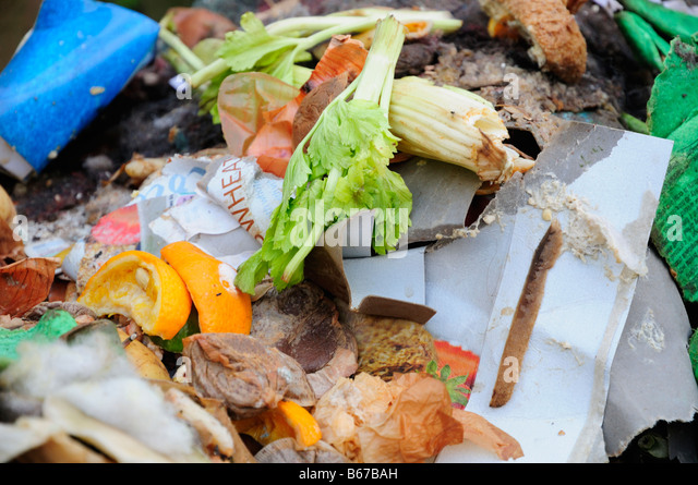 Composting Food Waste - Stock Image