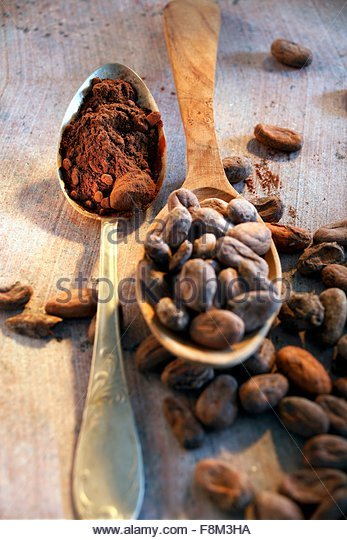 Still life with roasted cocoa beans and cocoa in spoon - Stock Image