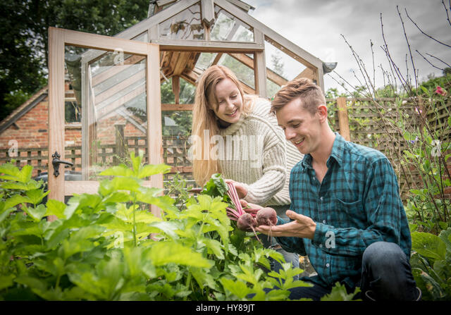 Two young gardeners work in their vegetable garden - Stock Image
