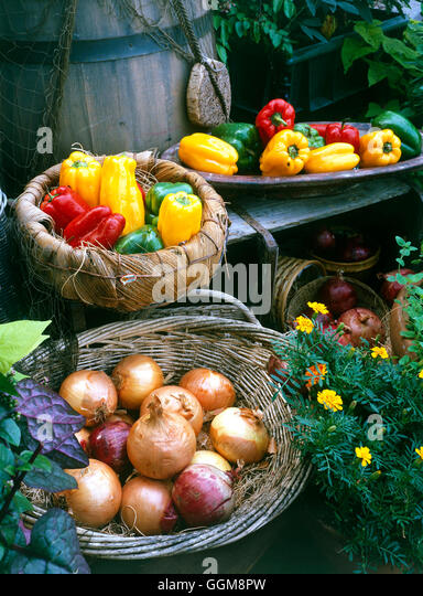 Vegetable Collection - Onions and Peppers   VCO099893 - Stock Image