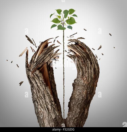 Breaking through concept as a green sapling growing upward and destroying a tree barrier as a business success metaphor - Stock-Bilder