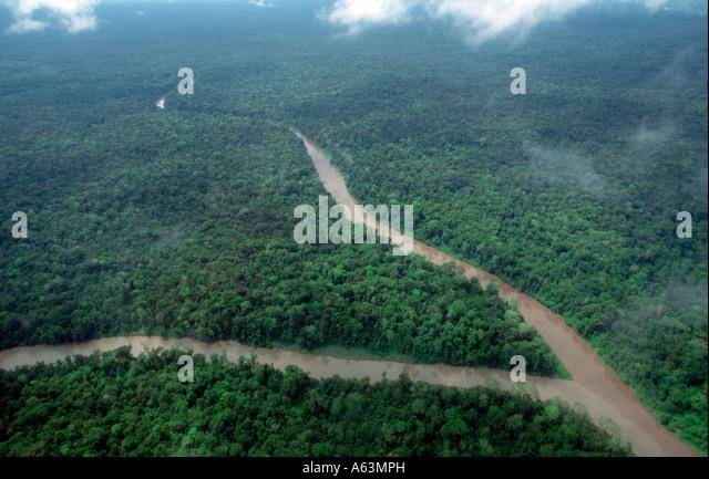 Papua New Guina , rain forest, Ok Tedi river, Western Province - Stock Image