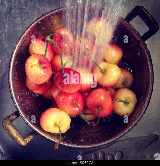 Washing Rainier cherries in kitchen sink. - Stock-Bilder