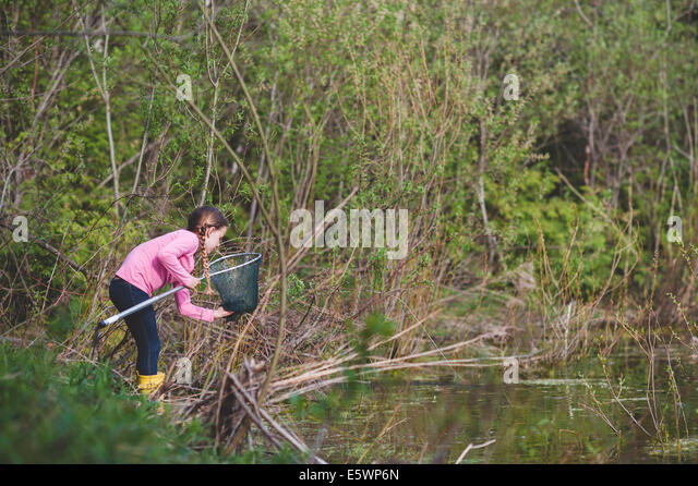 Girl retrieving frog from fishing net at pond - Stock Image
