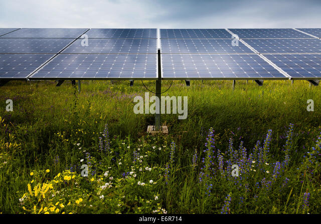 Power plant using renewable solar energy - Stock Image