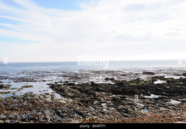 Rocky Coastline Green Point Cape Town south Africa - Stock Image