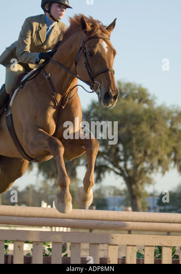 Teen girl rider and horses take obstacle at show jumping event - Stock Image