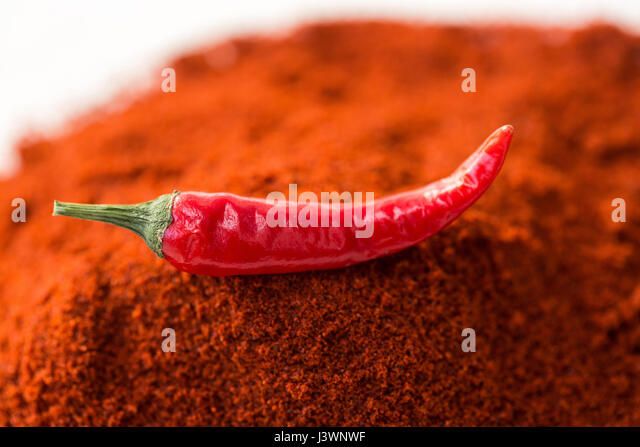 chili red hot pepper, concept of popular spice - closeup on delicious juicy pod of chili red pepper isolated over - Stock Image