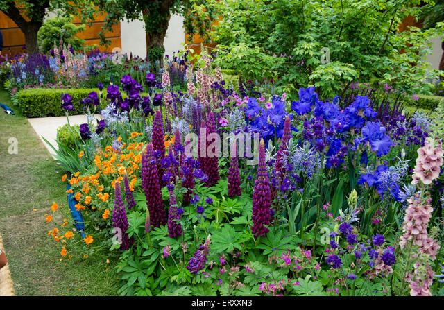 Rhs chelsea flower show winner 2015 stock photos rhs chelsea flower show winner 2015 stock - Chelsea flower show gold medal winners ...