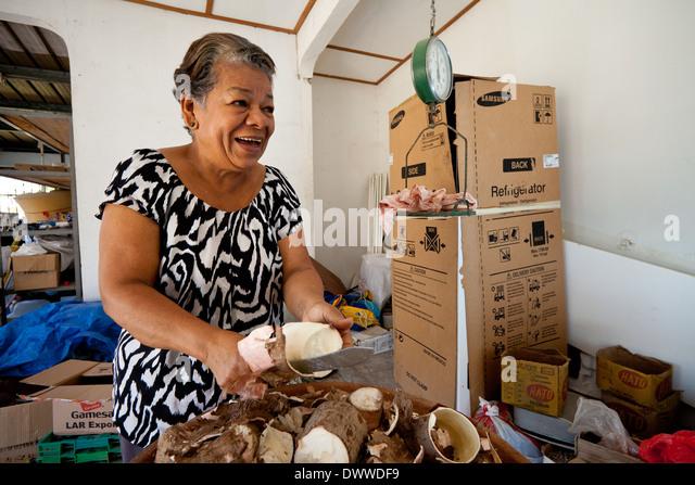 Gumercinda Gordon prepares yuca in her house in Penonome, Cocle province, Republic of Panama. - Stock-Bilder
