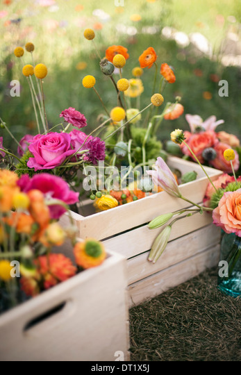 Wedding table decorations A wooden box of fresh flowers delicate and brightly coloured blooms Orange pink and purple - Stock Image