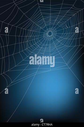spider web illustration, for background. - Stock-Bilder