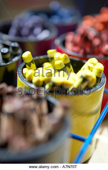 Pots of multi coloured crayons in rows close up focus on yellow crayons still life - Stock Image