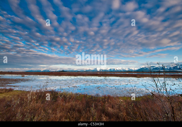 Cirrocumulus clouds over Alaganik slough in the morning, Chugach National Forest, Cordova, Southcentral Alaska, - Stock Image