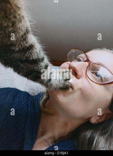 Cat paw - Stock-Bilder