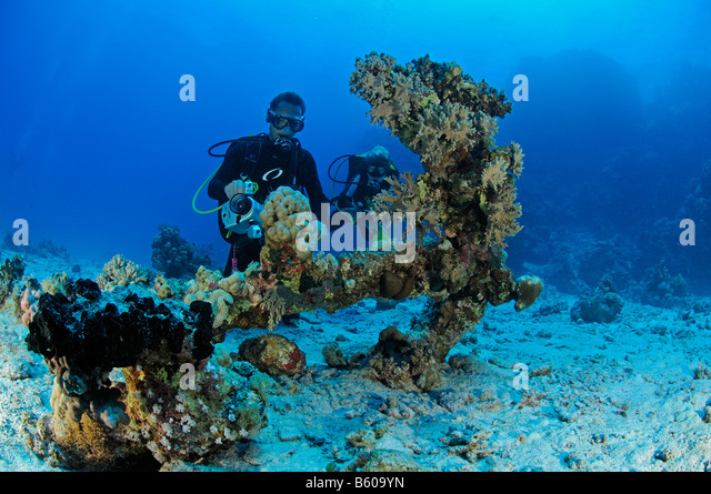 scuba diver, archaeology wreckdiving, Red Sea - Stock Image