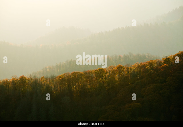North America, USA, North Carolina, View of fog covered Great Smokey Mountains National Park - Stock Image